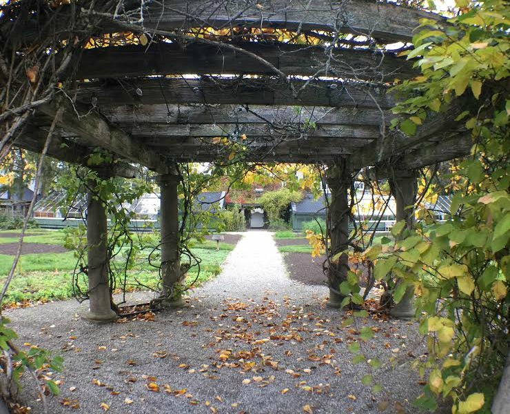 Langdon-Hall-garden-pergola2